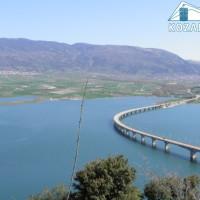Διεξαγωγή δύο διήμερων φεστιβάλ αθλητικής αλιείας κυπρίνου στην τεχνητή λίμνη Πολυφύτου