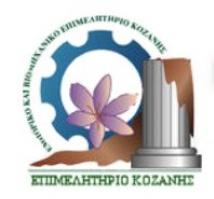 eve_kozanis