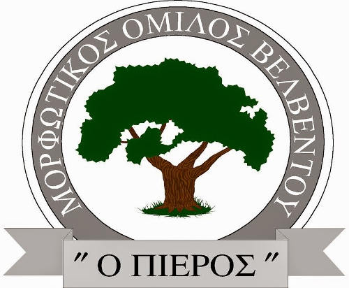 morfotikos_omilos_velventou