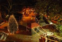 Το 16 Δεκεμβρίου το άναμμα του Χριστουγεννιάτικου δέντρου στα Σέρβια Κοζάνης