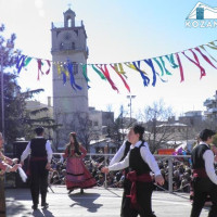 Πρόσκληση εκδήλωσης ενδιαφέροντος ανάθεσης τεχνικών εργασιών για την Κοζανίτικη Αποκριά 2017