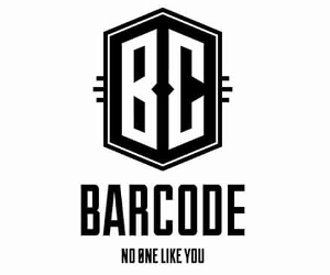 barcode_new_300_250.png