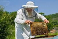 Ικανοποίηση για το Κέντρο Μελισσοκομίας στην Κοζάνη