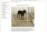 Νέα ανακοίνωση του Δήμου Κοζάνης σχετικά με την υιοθεσία των 8 σκύλων ροτβάιλερ του 72χρονου από τον Άργιλο