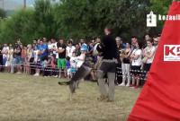 Μια εξαιρετική επίδειξη σκύλων την Κυριακή στην Κοζάνη που δεν πρέπει να χάσετε