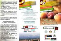 Πλούσιες εκδηλώσεις στη 12η Γιορτή Ροδάκινου στο Βελβεντό – Δείτε το πρόγραμμα