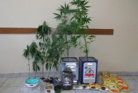 Σύλληψη 51χρονου σε περιοχή της Πτολεμαΐδας για καλλιέργεια και πώληση ναρκωτικών