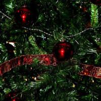 Θεσσαλονίκη: Το χριστουγεννιάτικο δέντρο που κάνει το γύρο των social media – Αιτία… η τιμή του!