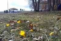 Πολύς κόσμος την Καθαρά Δευτέρα στο δάσος του Οσίου Δαυίδ στο Μαυροδένδρι Κοζάνης – Δείτε φωτογραφίες