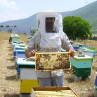Ο μηχανικός Γιάννης Καλαμπούκας βάζει την Σιάτιστα στον μελισσοκομική χάρτη – Επενδύει σε τυποποιητήριο για να αρχίσει εξαγωγές μελιού