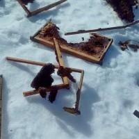 Επιδρομή γουνοφόρων ζώων σε κοτέτσια και μελίσσια στην Ελάτη! Δείτε φωτογραφίες