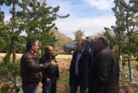 Επίσκεψη του βουλευτή του ΣΥΡΙΖΑ Κοζάνης Μ. Δημητριάδη στους κερασοπαραγωγούς στο Μεσόβουνο Εορδαίας