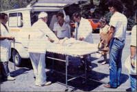 Ο φονικός καύσωνας του 1987: Το πιο θανατηφόρο κύμα καύσωνα στη σύγχρονη Ελληνική Ιστορία με 1.500 θύματα