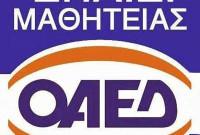 Νέες ειδικότητες και φέτος στην ΕΠΑΣ Μαθητεία του ΟΑΕΔ Κοζάνης
