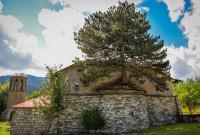 100 χρονών δέντρο μεγαλώνει μέσα στο ιερό εκκλησίας στα Γρεβενά