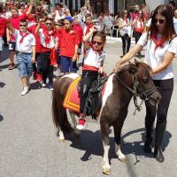 Σιάτιστα: 7 παρέες με 213 άλογα συμμετείχαν στη φετινή παρέλαση των καβαλάρηδων της Παναγιάς – Δείτε το βίντεο