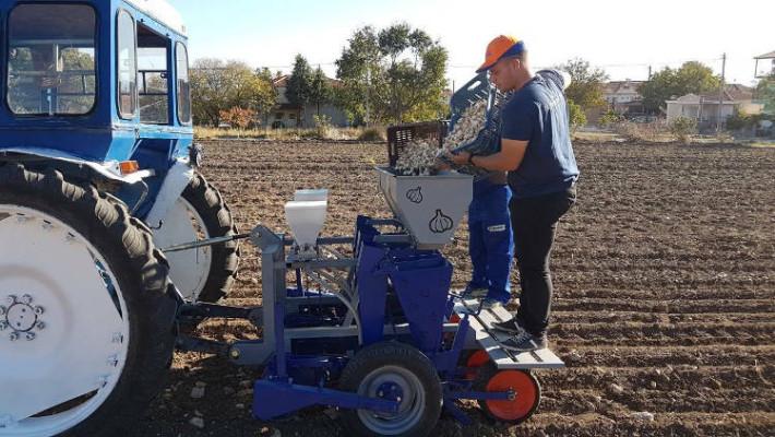 Ξεκίνησε η καλλιέργεια σκόρδων στα Πετρανά Κοζάνης – Υψηλοί στόχοι για την ομάδα καλλιεργητών