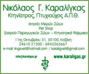 karaligkas300_250.jpg