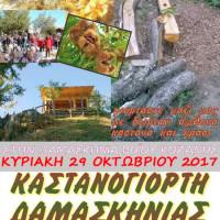 Στις 29 Οκτωβρίου η φετινή Καστανογιορτή στη Δαμασκηνιά Βοΐου
