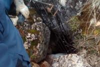 Επανεμφάνιση της αρκούδας στην Αναρράχη του Δήμου Εορδαίας – Χρήσιμες πληροφορίες από τους αρμόδιους φορείς