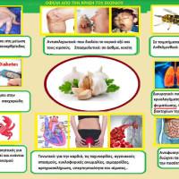 Πληροφορίες για την καλλιέργεια του σκόρδου και τις ιατροφαρμακευτικές ιδιότητες – Του Σταύρου Καπλάνογλου