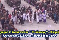 Βίντεο: Δείτε όλη την αποκριάτικη παρέλαση στα Σέρβια