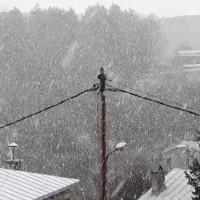 Στα λευκά ντύθηκε το Νυμφαίο το πρωί της Τετάρτης 21 Μαρτίου – Δείτε το βίντεο