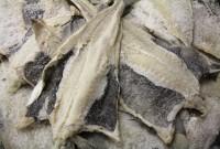 Κοζάνη: Και φέτος στο τραπέζι της 25ης Μαρτίου ο καθιερωμένος μπακαλιάρος από τον Θαλάσσιο Κόσμο