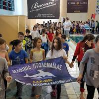 Με τη συμμετοχή 400 αθλητών η φιλική ημερίδα Ακαδημιών στο Δημοτικό κολυμβητήριο της Πτολεμαΐδας