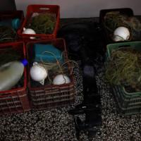 2 συλλήψεις για παράνομη αλιεία στη λίμνη της Καστοριάς