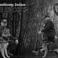Κέντρο Εκπαίδευσης Σκύλων White Ghosts K9 στην Κοζάνη