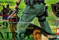 Άλλο ένα σπουδαίο σεμινάριο – σχολείο εκπαιδευτών σκύλων με μια μοναδική επίδειξη από το Κέντρο Εκπαίδευσης Σκύλων White Ghosts K9 στην Κοζάνη