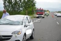 Απίστευτο τροχαίο στην Εγνατία έξω από τη Βέροια: Δέντρο ξεριζώθηκε και σκότωσε επιβάτη ΙΧ – Δείτε βίντεο και φωτογραφίες