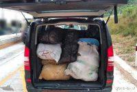 Κοζάνη: Μετέφεραν πάνω από 200 κιλά κάνναβη στο αμάξι τους με συνοδεία άλλων 2 αυτοκινήτων! 4 συλλήψεις σε περιοχή της Κοζάνης