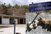 Αθώα η τότε Αντιδήμαρχος Κοζάνης Ελένη Τασοπούλου και οι 2 κτηνίατροι του Δήμου για την υπόθεση του Καταφυγίου Αδέσποτων ζώων Κοζάνης