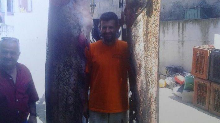 Άλλοι 2 γουλιανοί τεραστίων διαστάσεων αλιεύθηκαν στη λίμνη Πολυφύτου – Στα 262 κιλά το συνολικό τους βάρους
