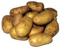 Σαπίζουν στις αποθήκες οι απούλητες πατάτες στην Εορδαία