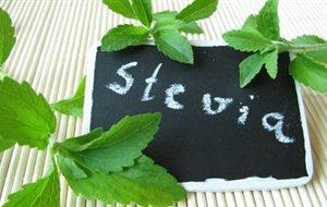 stevia_banner7654