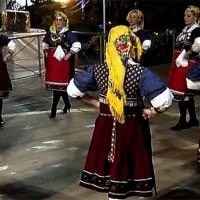 Ο Πολιτιστικός Σύλλογος Αιανής στην Κοζανίτικη Αποκριά 2013! Δείτε το βίντεο