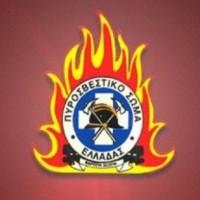 Αγροτική πυρκαγιά στην Τ.Κ. Φιλώτα, του Δήμου Αμυνταίου