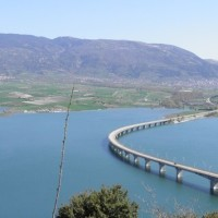 Εμπλουτισμός της λίμνης Πολυφύτου με γόνους κυπρίνου – Δείτε το βίντεο