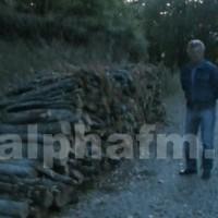 500 τόνοι καυσόξυλων έγιναν «άφαντοι» στην Κλεισούρα!