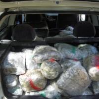 Εντοπίστηκε αυτοκίνητο με 113 κιλά κάνναβη στα Γρεβενά – Σε εξέλιξη αστυνομική επιχείρηση