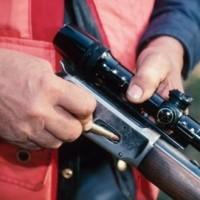 Απαγορεύεται προσωρινά το κυνήγι πανελλαδικά
