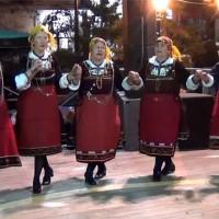 Δείτε όλα τα χορευτικά τμήματα του Συλλόγου «ΕΜΑΣ Μέγας Αλέξανδρος» Λευκοπηγής!