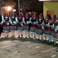 Δείτε τα χορευτικά τμήματα του Συλλόγου της Νέας Χαραυγής στην Κοζανίτικη Αποκριά 2014!