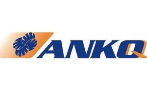 anko43253565