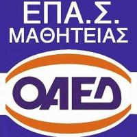 Έως τις 23 Σεπτεμβρίου οι αιτήσεις για εγγραφές στην ΕΠΑΣ ΟΑΕΔ Μαθητείας Κοζάνης για το σχολικό έτος 2021-22