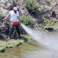 ΠΔΜ: Ανακοίνωση της Δ/νσης Δημόσιας Υγείας για την προστασία από τα κουνούπια
