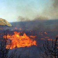 Δήμος Κοζάνης: Προληπτικά μέτρα για τις δασικές πυρκαγιές
